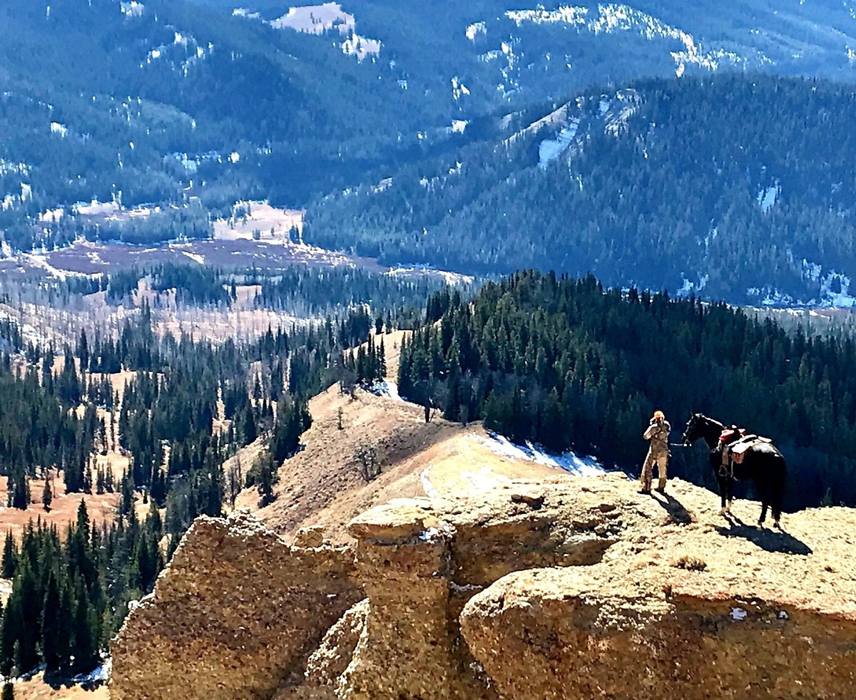 Experience The Bridger Teton National Forest