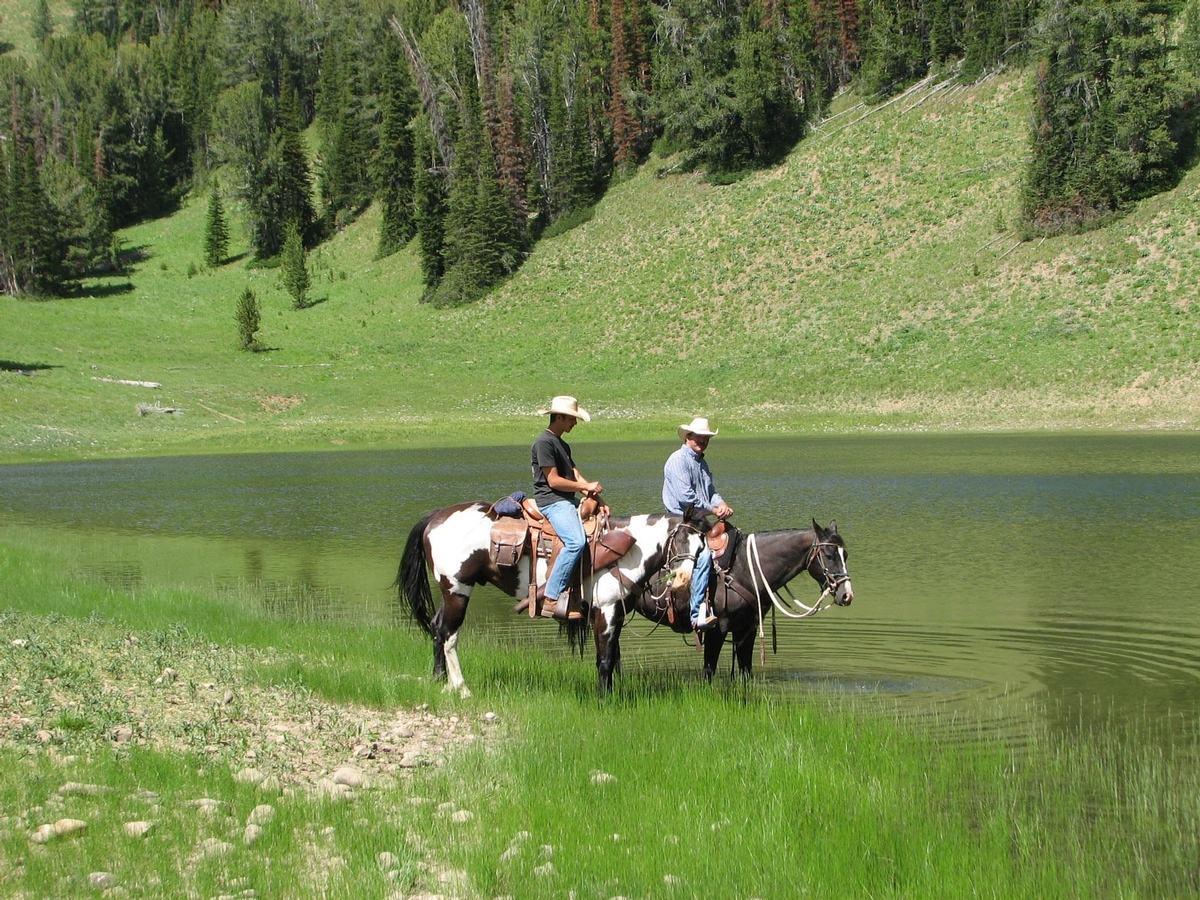 Trail Riding Rates